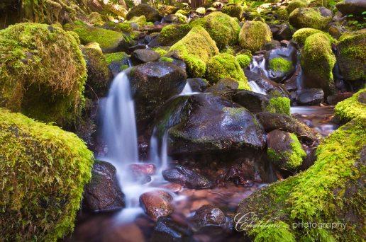 Mossy Cascade