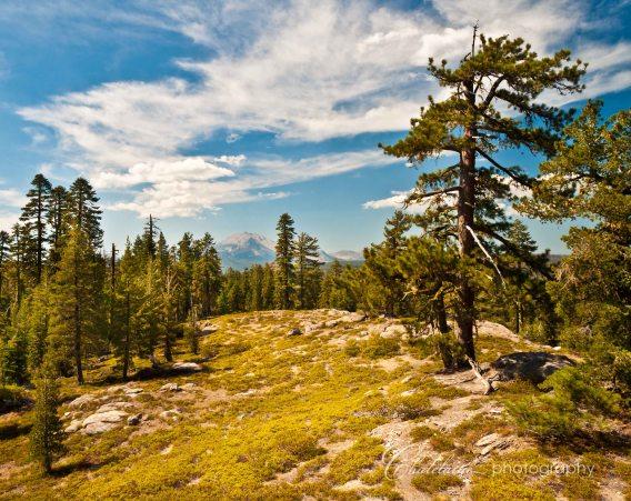 Lassen Peak in the distance